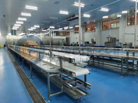 Flexible Automatic Catfish Processing Line
