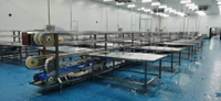 High Profitablity Automatic Catfish Processing Line