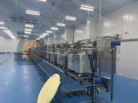 Food Safety Hygiene Automatic Vannamei Deveining Processing Line